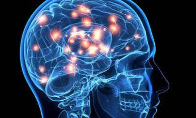 Bu Duygu Beyni Küçültüyor!