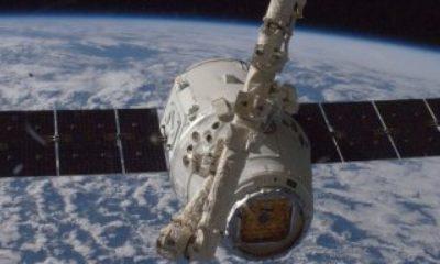 SpaceX uzaya kenevir gönderecek