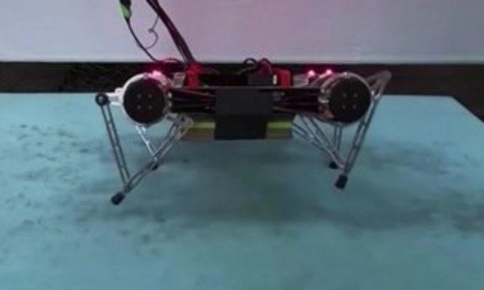 Araştırmacılar, kendi kendine yürümeyi öğrenen robot üretti Kendi kendine yürümeyi öğrenen robot – VİDEO
