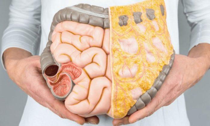 Bağışıklık Sistemini Güçlendirmek İçin Ne Yapmak Gerekir?