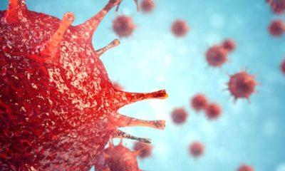 Coronavirüse Yakalanma Riski En Yüksek Olan Kan Grubu Hangisi?