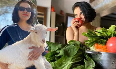 'Annem yine haklı çıktı' Ünlü şarkıcı karantina günlerini Ege'de geçiriyor