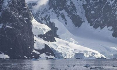 Antarktika'da küresel ısınma nedeniyle yosunlar belirdi