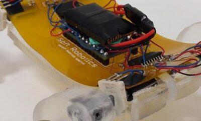 Göçük altında kalanlara ulaşabilecek minyatür robot