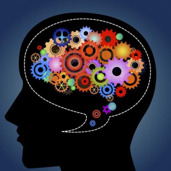 Renkleri beynin hangi bölgesinin algıladığı keşfedildi