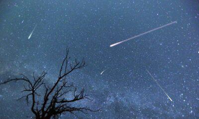 Perseid meteor yağmuru nedir