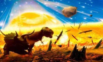 359 milyon yıl önceki kitlesel yok oluşa yıldız patlamaları neden oldu