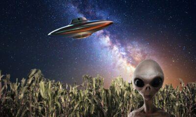 Bilim insanları: Uzaylıları ölmeden önce göreceğiz
