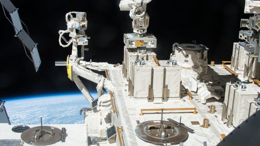 Uluslararası Uzay İstasyonu araştırmasına göre bakteriler Mars yolculuğuna hazır