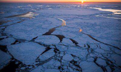 Bilim insanlarından kritik uyarı: Bering Denizi son 5 bin 500 yılın en düşük seviyesinde