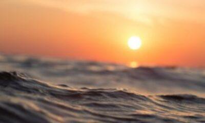 Eylül 2020, tarihin en sıcak eylül ayı oldu