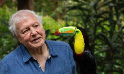 Sir David Attenborough, Instagram'da 1 milyon takipçiye en kısa sürede ulaşan isim oldu