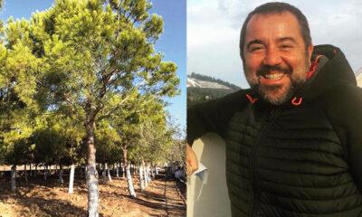 Ata Demirer'in fidanları ağaç oldu