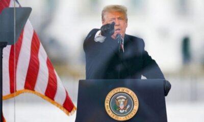 Donald Trump, hapis cezası alan Google çalışanını affetti