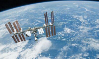 SpaceX'in uzaydaki fareleri ve NASA'nın şarabı, Dünya'ya geri dönüyor