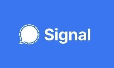 WhatsApp'ta yer alan özellikler Signal'e geliyor